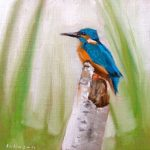 Kingfisher by Dan Johnson