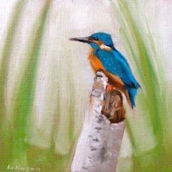 Kingfisher by Dan Johnson