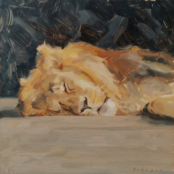 Cat Nap by Dan Johnson