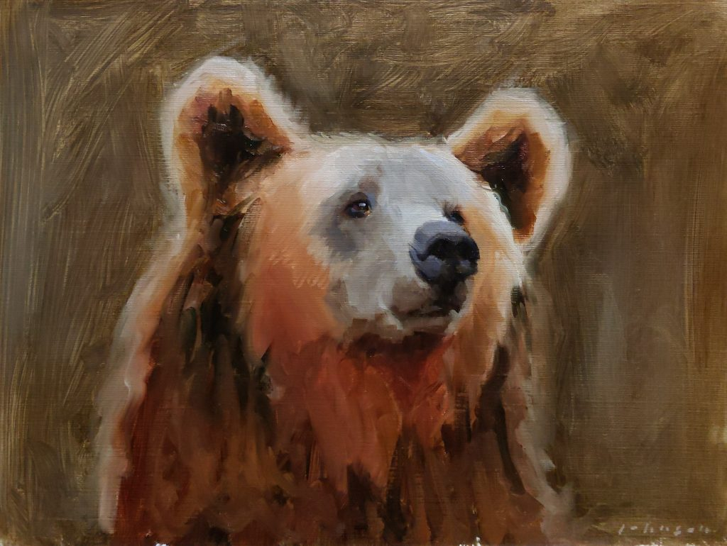 Brown Bear by Dan Johnson