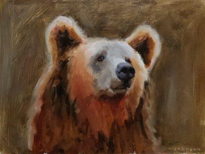 Brown Bear by Dan Johnson