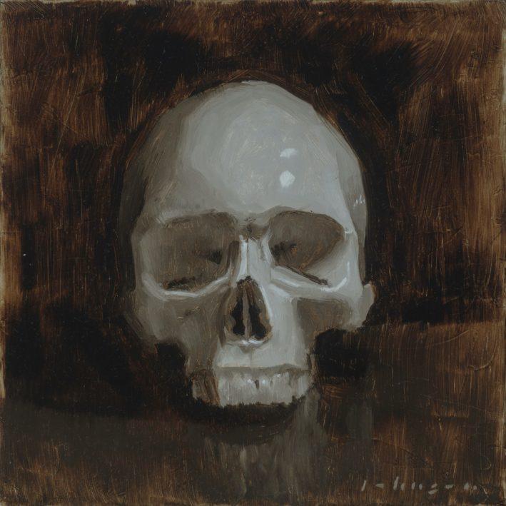 skull-study-dan-johnson